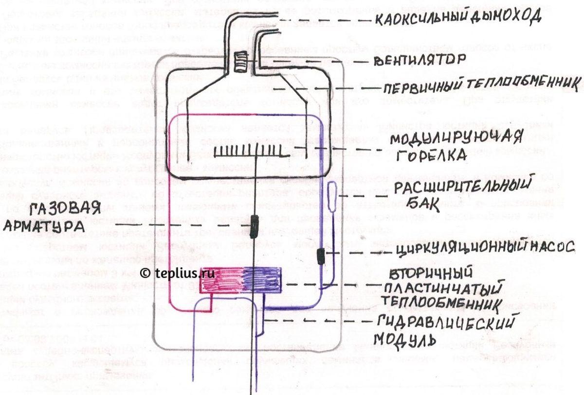 Схема газового котла двухконтурного фото 467